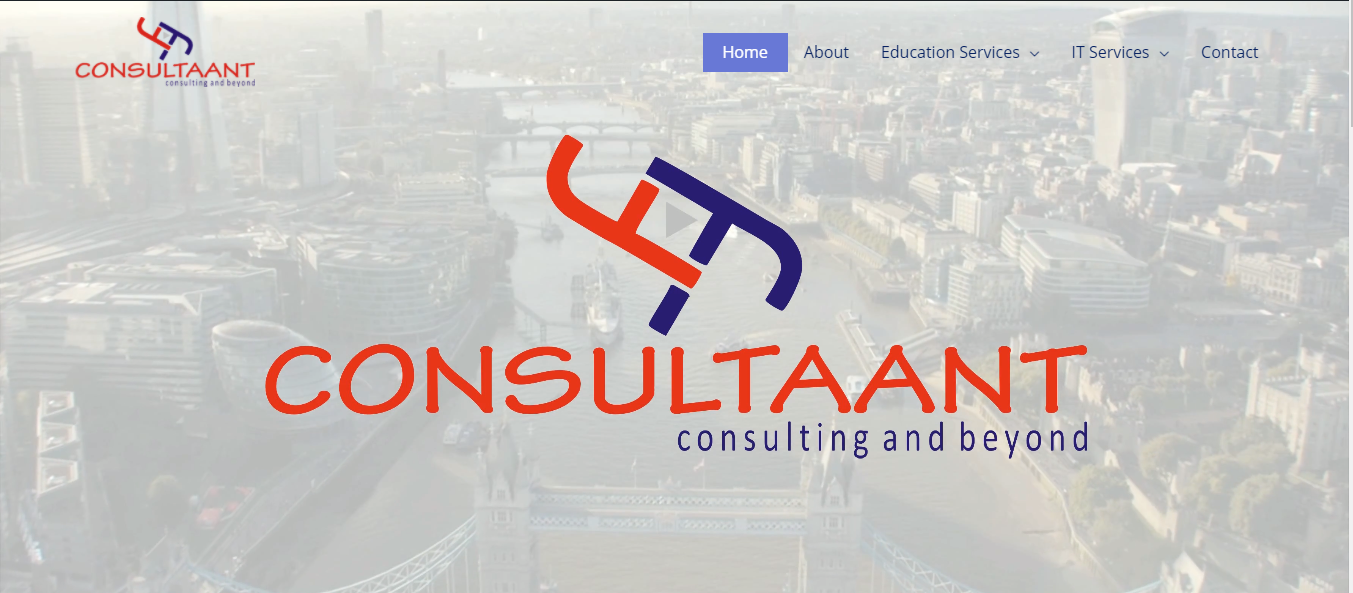 consultaant project